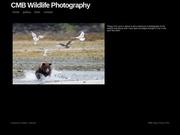 CMB Wildlife Photography
