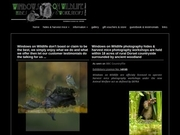 Dean Mason Wildlife Photography - Windows On Wildlife Hides And Workshops