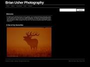 Brian Usher Photography