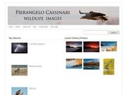 Pierangelo Cassinari - Wildlife Images