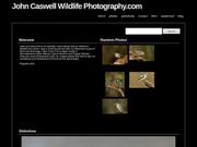 John Caswell Wildlife Photography.com