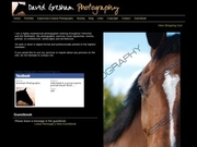Equestrian, Equine, Horse, Event Photographer In West Yorkshire